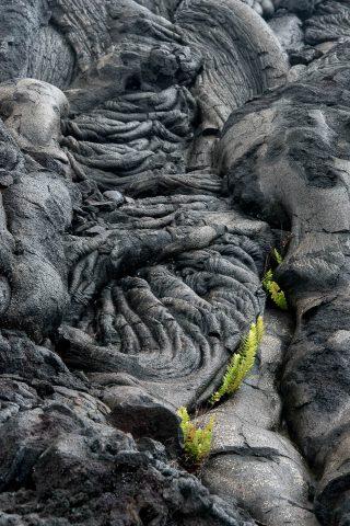 Lava patterns, Big Island