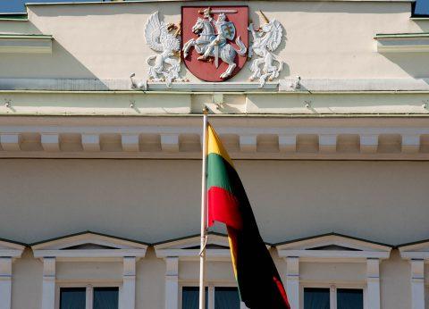 Presiential Palace (detail),  Vilnius