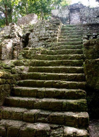 Steps at 7 Temples Plaza, Tikal