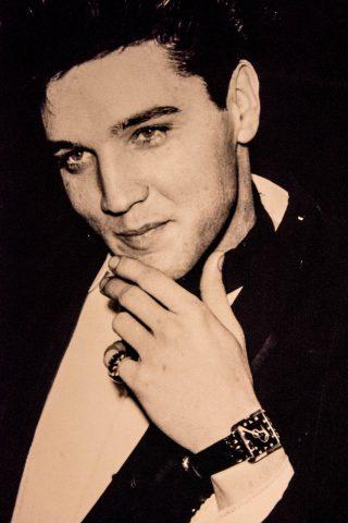 Elvis portrait, Graceland, Memphis