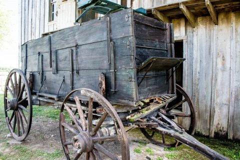 Cart for cleaned cotton, Frogmore Plantation, Louisiana