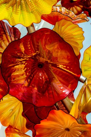 Chihuly Glass & Garden, Seattle,