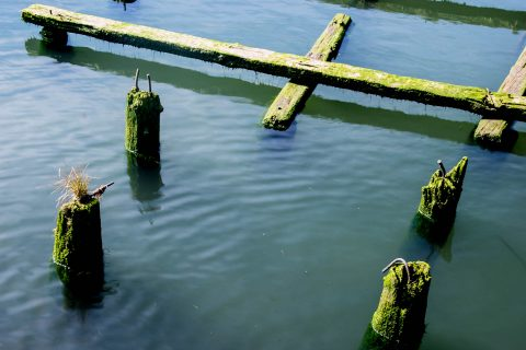 Wharves, Columbia River, Astoria