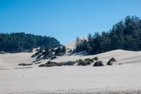 Umpqua Dunes, Oregon