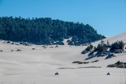 Umpqua Dunes with quad bikes, Oregon