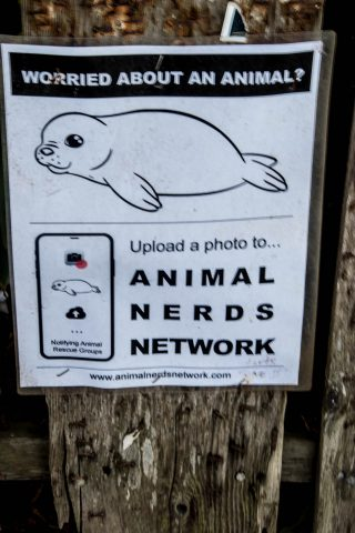 Poster, Mendocino, California