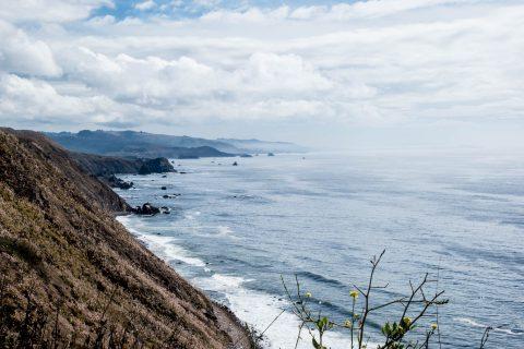 Coast near Fort Ross, California