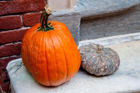 Elfreth's Alley's pumpkin, Philadelphia