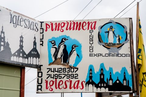 Sign for visit to Penguins, Ancud, Chiloe, Chile