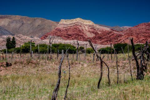 Quebrada de Humahuaca near Uquia, Argentina