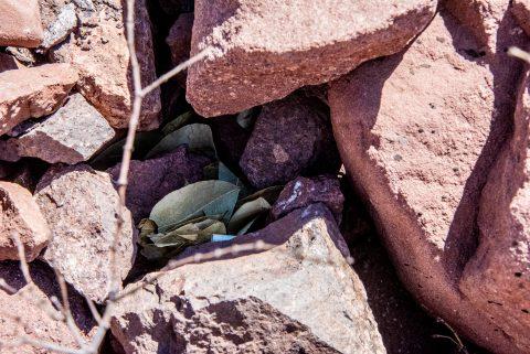 Quebrada de las Conchas - offerings to Pachamama - Argentina
