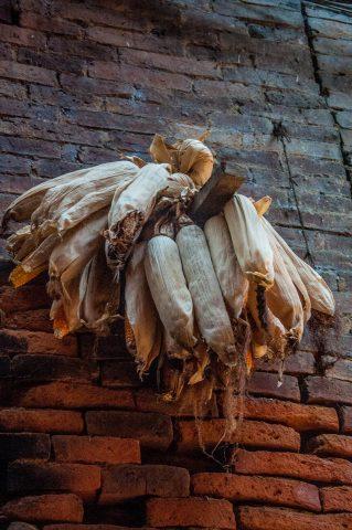 Drying maize, Bhaktapur, Nepal