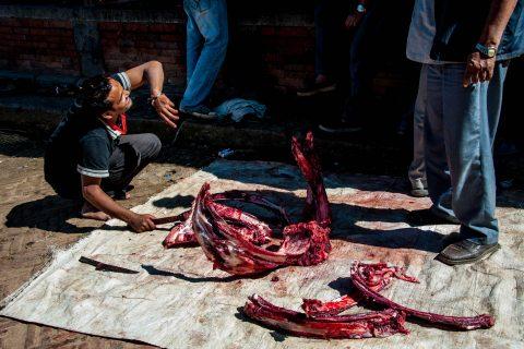 Butchering, Bhaktapur, Nepal