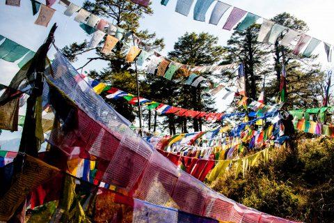 Prayer flags, Dochula Pass, Bhutan