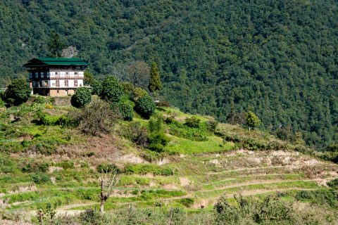 Traditional house, Punakha Valley, Bhutan