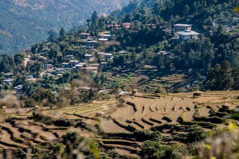 Wangduephodrang, Punakha valley, Bhutan