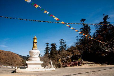 Pelela Pass (10825 feet), Bhutan