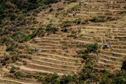 Cultivated terraces from Trongsa Dzong, Bhutan