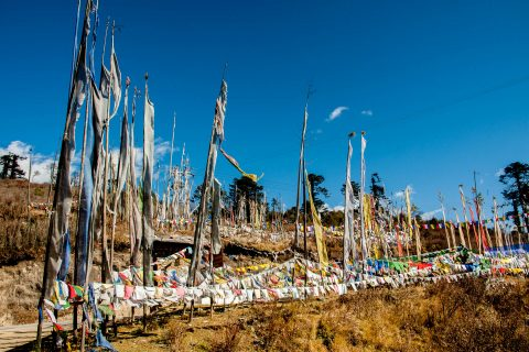 Prayer flags, Yutongla Pass (11155feet), Bhutan