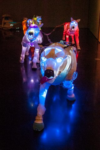 Huskies made from plastic recovered from ocean, Anchorage Museum