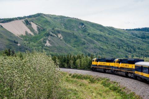 View from Denali to Fairbanks train, Alaska