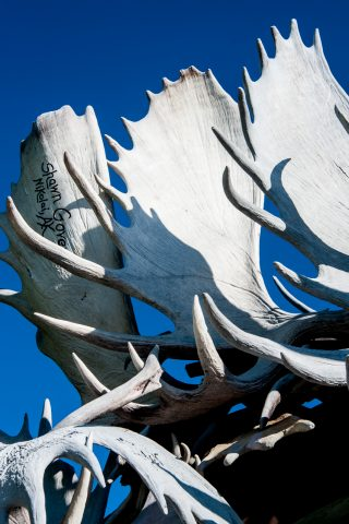 Antler Arch, Griffin Park, Fairbanks, Alaska