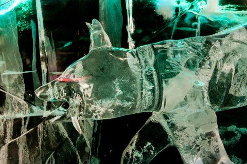 Ice Museum carvings, Fairbanks, Alaska