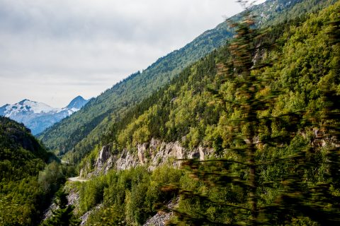 Skagway River valley, Alaska