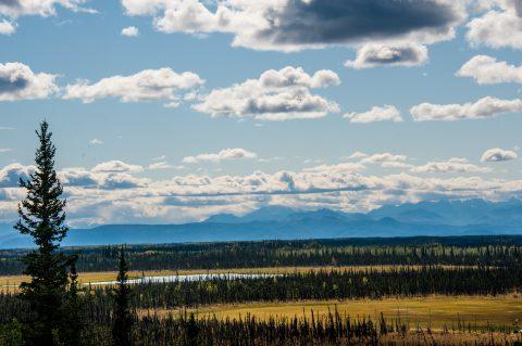 Seaton Recreation Area, Tok, Alaska
