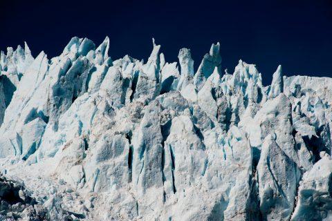 Holgate Glacier, Holgate Arm, Gulf of Alaska