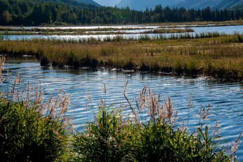 Tern Lake, near Cooper Landing, Alaska