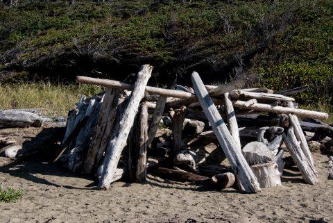 Driftwood, Wickinmish Beach, Vancouver Island