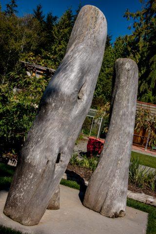 Adam & Eve, Botanical Gardens, Tofino, Vancouver Island