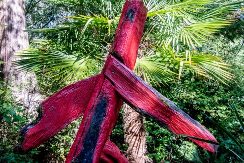 Red Man Running, Botanical Gardens, Tofino