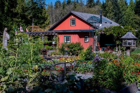 Botanical Gardens, Tofino, Vancouver Island