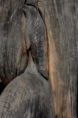 Carving detail on totem pole, Duncan, Vancouver Island