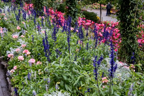 Butchart Gardens, near Victoria, Vancouver Island