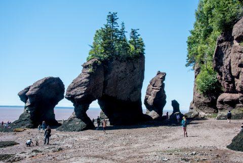 Hopewell Rocks. Bay of Fundy, New Brunswick