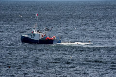 Lobster boat laying traps off Lakies Head, NS