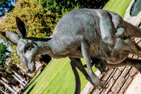 Kangaroo &  joey statue, Sterling Gardens, Perth WA