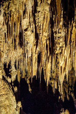 Mamoth Cave, near Margaret River WA