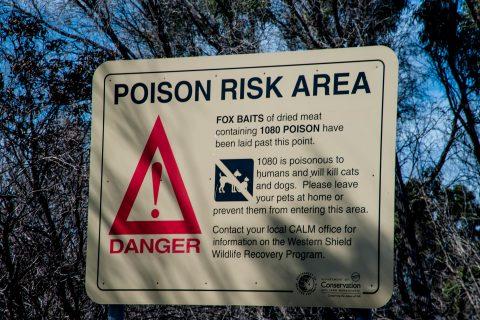 Warning sign, Pemberton, WA