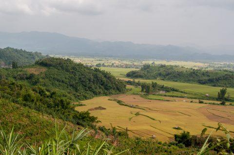 View in Nam Ha area, Laos