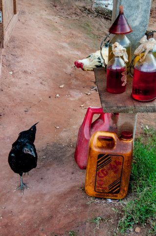 Chickens and petrol for sale,  Akha village, Laos