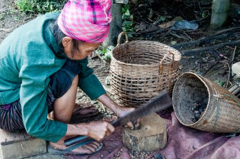 Chopping what?, Hmong village, Laos