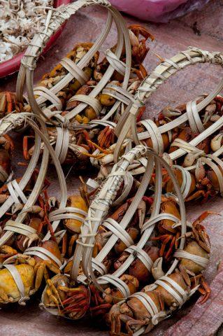 Baskets of crabs, market Luang Prabang, Laos
