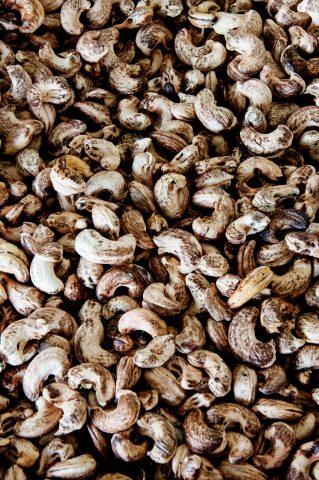 Cashew nut  factory near Chiang Mai, Thailand
