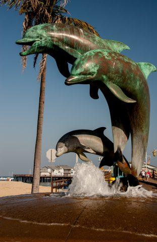 Dolphins, Santa Barbara waterfront, California