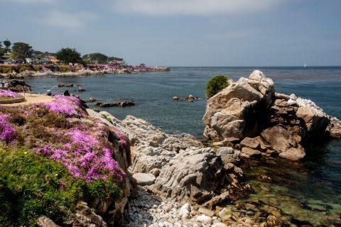 Perkins Park, Monterey, California