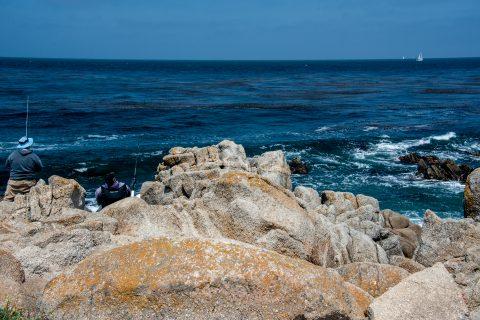 Pacific Grove, Monterey, California